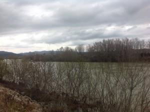 pujada riu Ebre 19-2-2013
