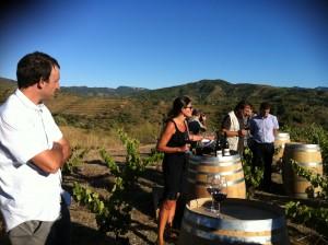 Priorat enoturisme tast vins_1 18-9-2013