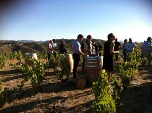 Priorat enoturisme tast vins_2 18-9-2013