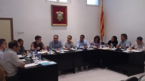 Ple Ajuntament Móra la Nova 28-4-2014