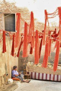 IMATGE - Turisme Ribera d'Ebre