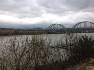 riu alt pont móra 19-2-2013