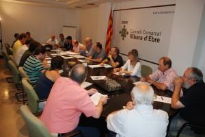 Ple Consell Comarcal Ribera d'Ebre 30-9-2013
