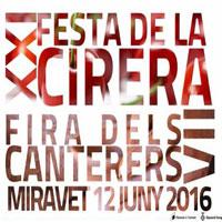 xxi_festa_cirera_miravet-200