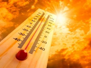 golpe-de-calor
